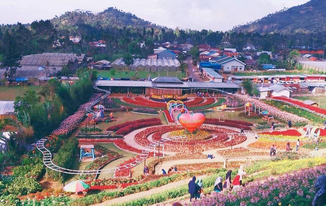 Bunga Desa Kutabawa yang Cantik, Kutabawa Flower Garden